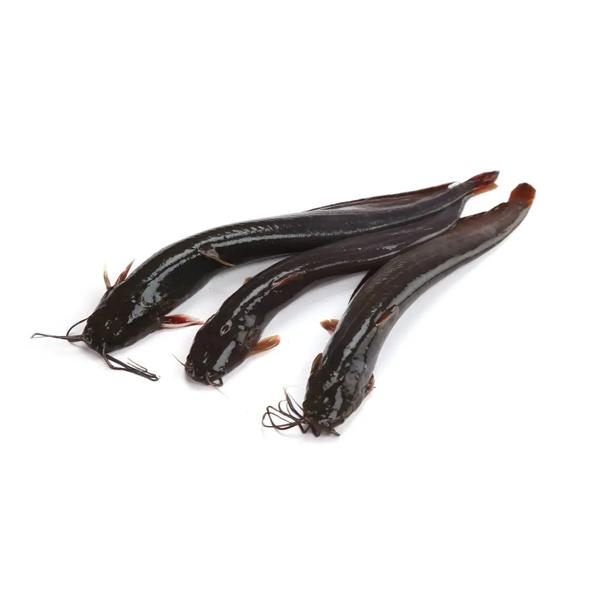 Shing Fish Big (1 kg )