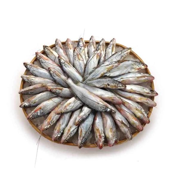 Gulsha Fish (500 gm)