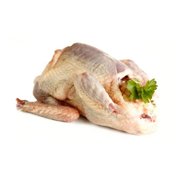 Pigeon (Kobutor) Meat (1 Pair)