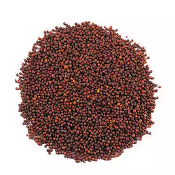 Mustard Seed (Red Sorisha)- 100 gm