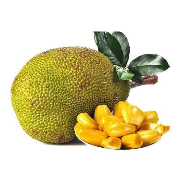 Jack fruit (Kathal) ( Small) (1 PC )
